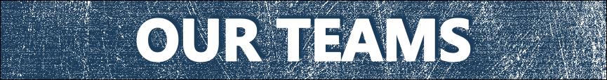 Our Teams tab